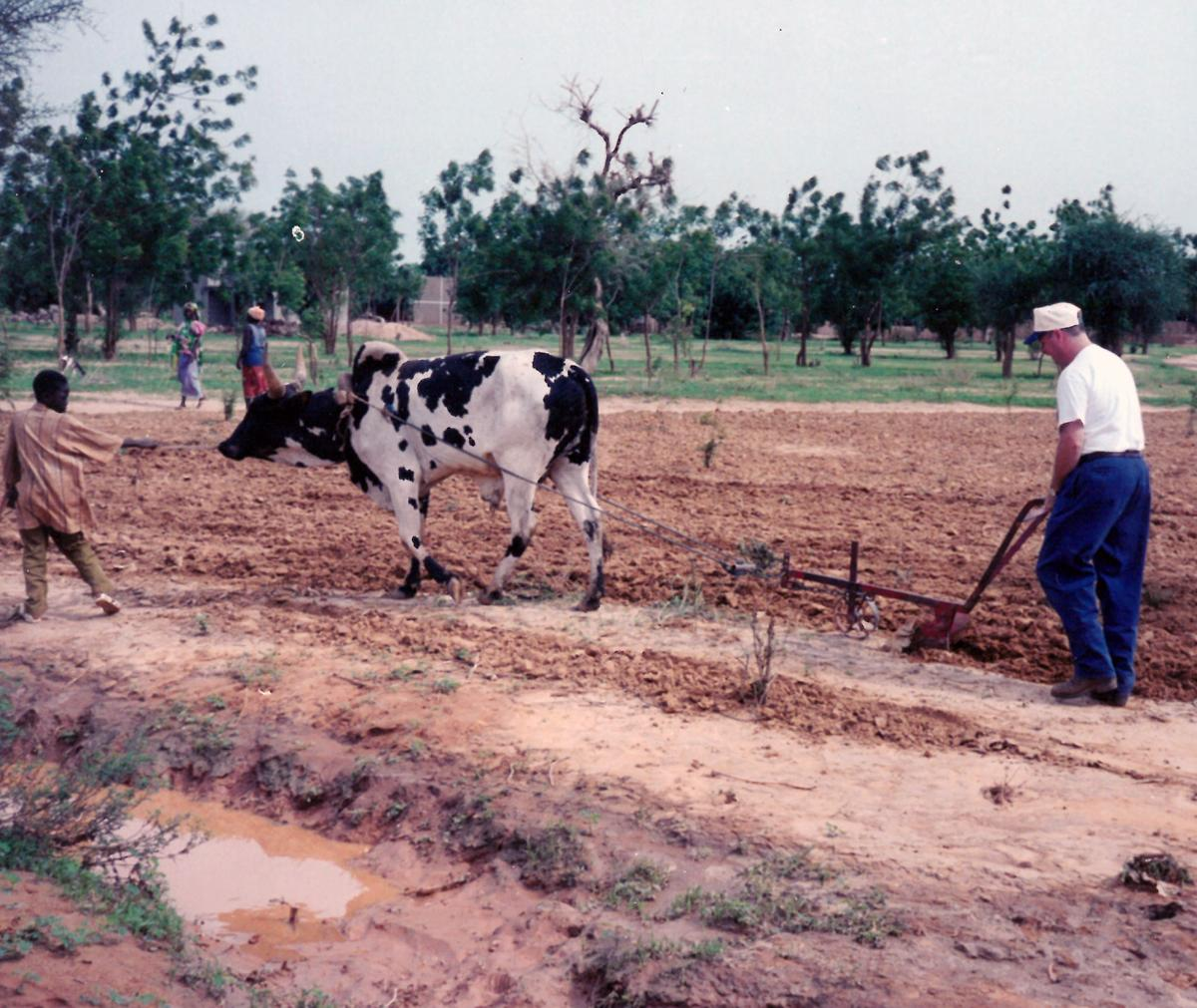 Plowing in Africa